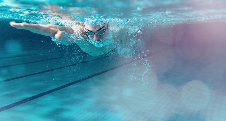 pływanie co można obstawiać u bukmachera